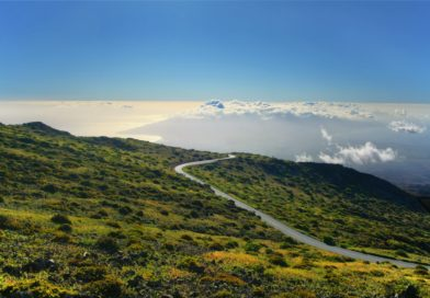 Περιβαλλοντική διαχείριση των περιοχών με οικιστικές πυκνώσεις, ιώδους περιγράμματος