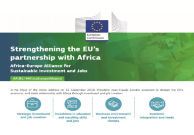 EIC's study for an EU-Africa Partnership for Sustainable Infrastructure