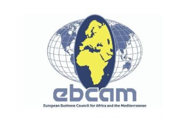 European Business Council for Africa October Newsletter